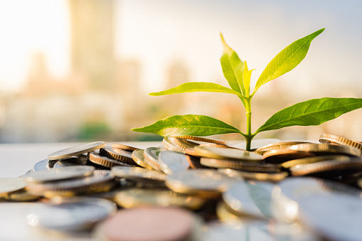 Green finance will accelerate the circular economy